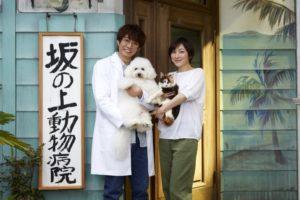 【僕とシッポと神楽坂】ビションフリーゼ(犬種)ダイキチの技がヤバい!