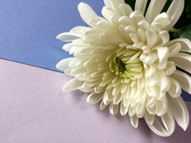 お供えにお花