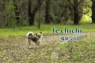テチチ福袋2021